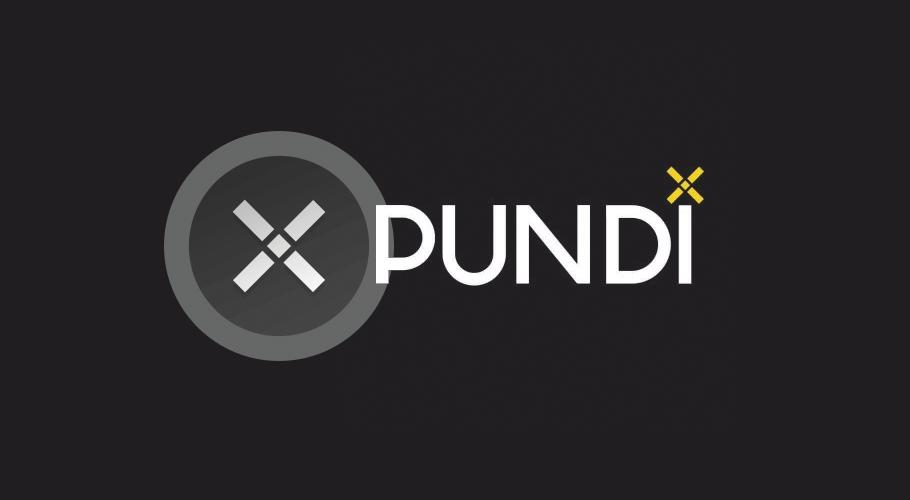 Криптовалюта Pundi X