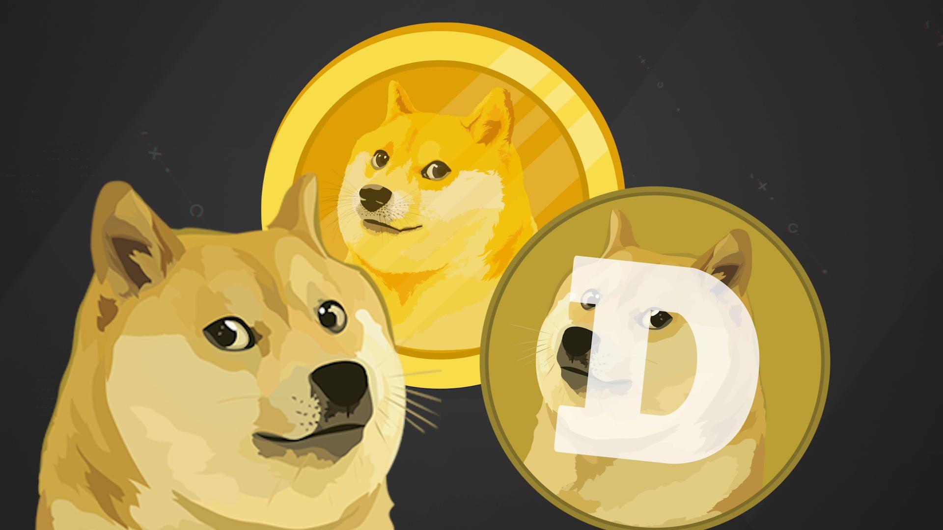 Курс Dogecoin вырос на 50%
